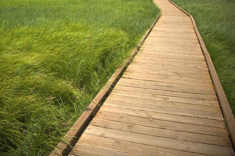 Ein Holzweg im Garten gebaut aus Holzterrassendielen